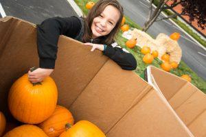 Steve Jones Pumpkin Giveaway